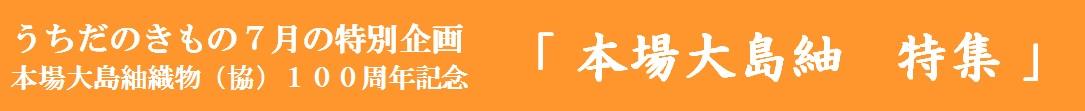 7月限定 企画 「本場大島紬 特集」